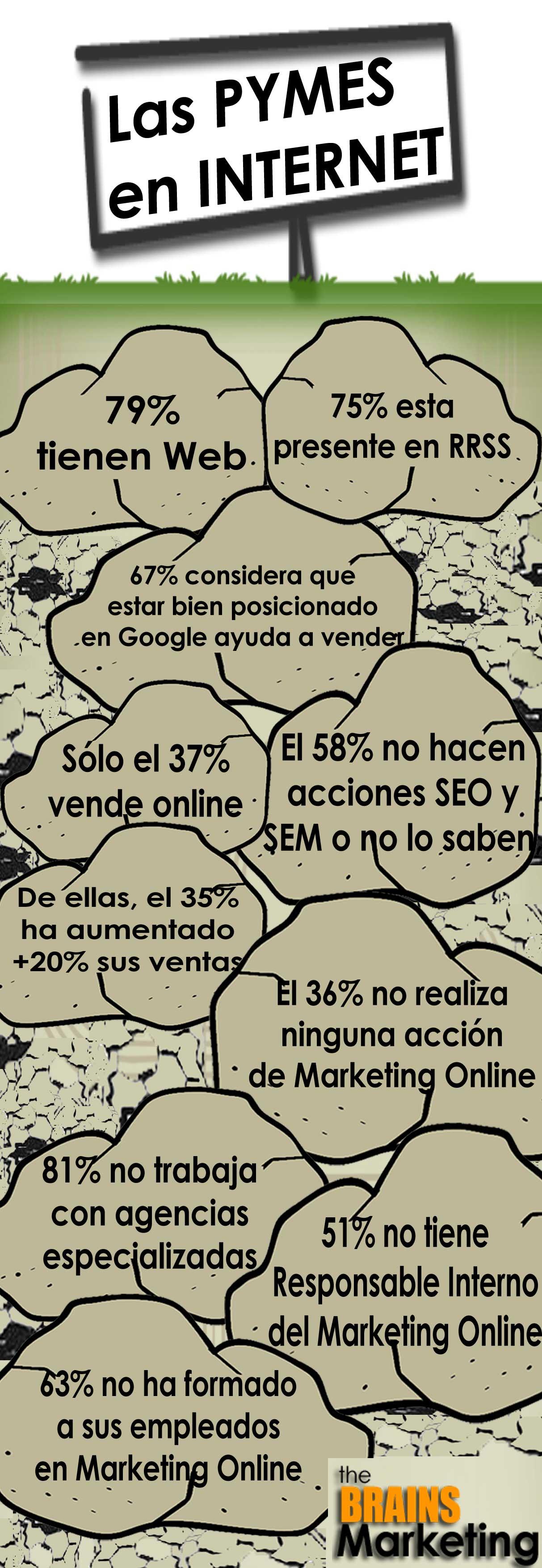 Se toman en serio las PYMES Internet?